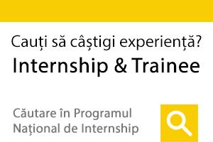 Programe de Internship si Trainee in mediul guvernamental, ong-uri si corporatii